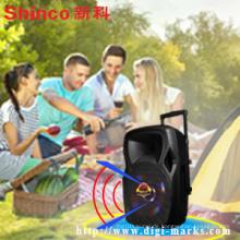 Beliebte 15 Zoll Kunststoff tragbare Lautsprecher mit Batterie