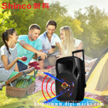 Popular 15 Inches Plastic Portable Speaker with Battery