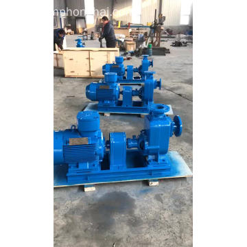 CYZ horizontal self-priming bronze salt water pump