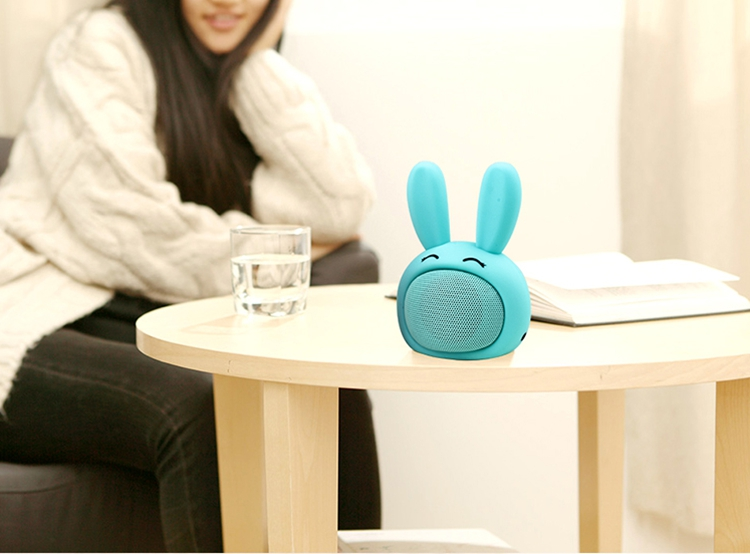 case bluetooth speaker