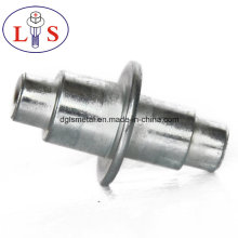 Factory Direct Sales of Stainless Steel Rivets/ Non-Stardard Rivets