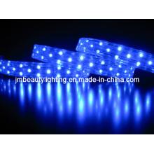Bande lumineuse LED 3 fils Corde lumineuse LED (forme plate)
