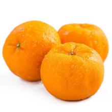 2021 New Crop China Fresh Sweet Juicy Citrus Mandarin Orange