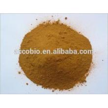 El mejor precio de la categoría alimenticia China Goldthread extracto de raíz en polvo 6% de berberina