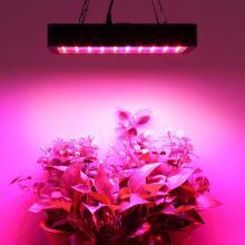 300W Full Spectrum LED Plant Grow Light