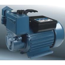 Self-Priming Pump/Water Pump (25ZB SERIES)