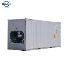 Tianjin LYJN Brand New Walk In 20ft Solar Powered refrigerado Reefer Container a buen precio