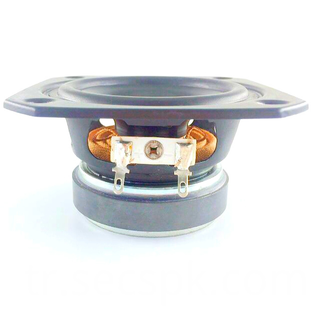 3 Injection Single Speaker