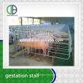 Hot Dip Galvanzie Pipe Pig Gestation Livestock Pig