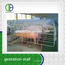Hot Dip Galvanzie Pipe Pig Gestation Stall Good Quality For Pig Crate
