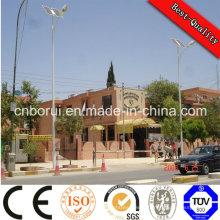 Angle solaire réglable de réverbère 100W LED d'angle de faisceau de la puissance élevée IP65 LED