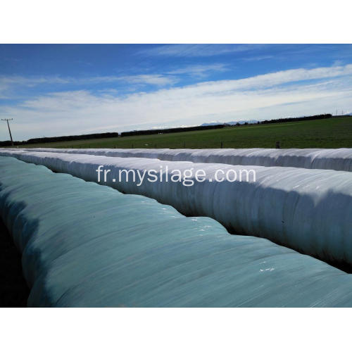 Film vert extensible agricole