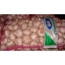 Exportação de boa qualidade Alho chinês fresco 5,0cm e até