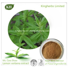 Lemon Verbena Extract 40: 1 Weight Loss Ingredients / Aloysia Triphylla Leaf Extract