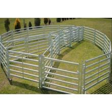 Galvaniserad Pipe Horse Fence Panel