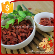 Purely natural thick sweet big plump goji berry