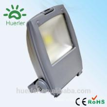 Shenzhen 85-265v ip66 al aire libre heló la cubierta deco hermosa 30w 50w llevó las luces de proyección