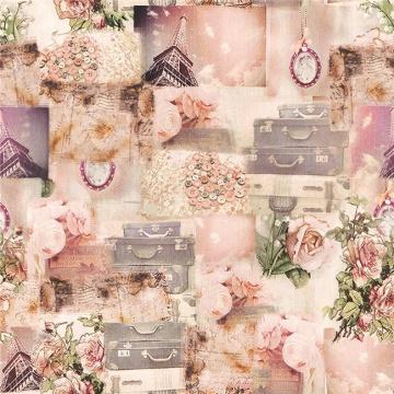 Druck Stoff Textil, Ramie Baumwolle bedruckte Stoffe (DSC-519)