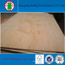 Low Price Pine Plywood for Decoration Use