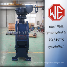 Double flange butterfly valve east well