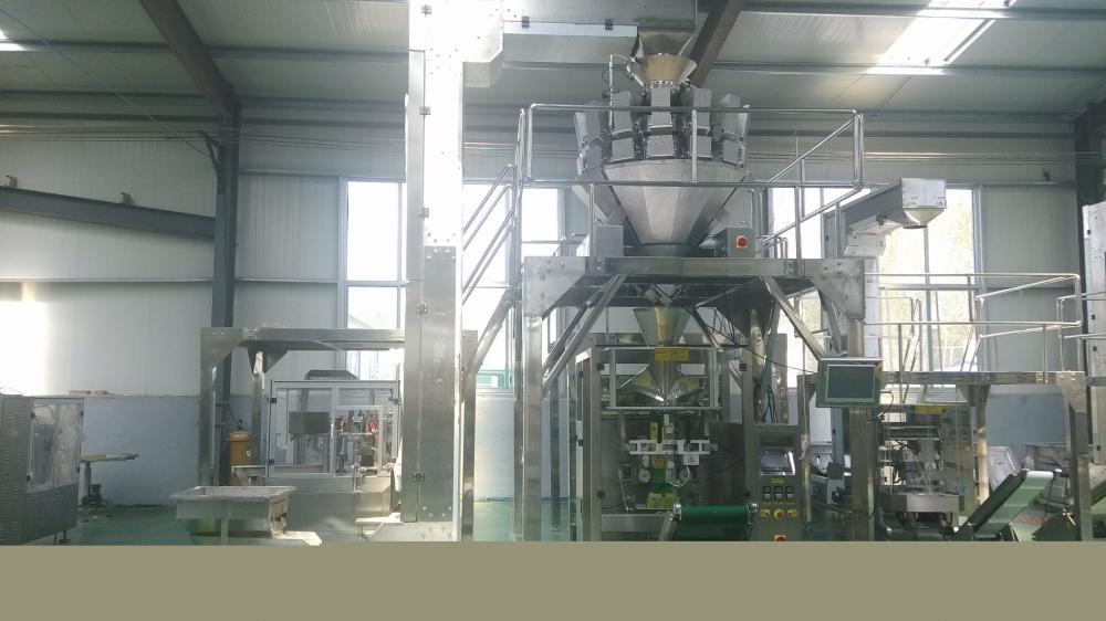custom Form Fill Seal Packing Machine