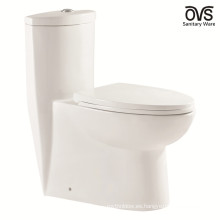 WC Toilet Floor Stand Baño One Piece Toilet
