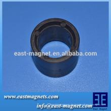 Mehrfach-Pole Magnet für bürstenlosen DC-Motor / Mehrpol-Magnetring für BLDC PUMP