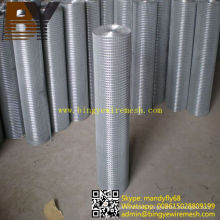 Hot-Dipped Galvanized Welded Wire Mesh Roll