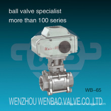 Motorized 3-Piece 316 Ball Valve with Electric Actuator