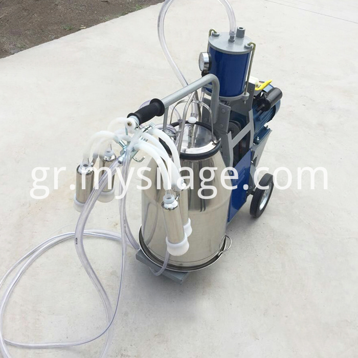 one bucket piston typed milking machine