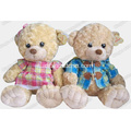 Peluche Teddy Bear, peluche registrabile