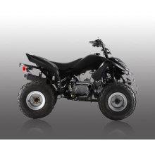 110cc quad-1 vélo