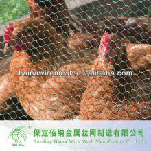 Anping Supply Chicken Mesh Factory Versorgung direkt