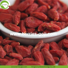 Non GMO Natural Nutrition Vitamins Conventional Goji Berries
