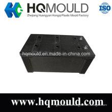 Molde de inyección de plástico de alta calidad de la caja del envase