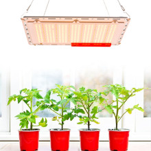MeanWell uv Quantum lm301b lm301H Boards Grow Lights