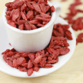 Longevity Fruit Chinese Traditional Medicine --Dried Goji Berry