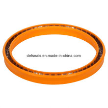 Teflon Spring Energized PTFE Sealing with V Ring