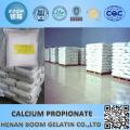 ingredients food preservative food preservative sodium propionate food ingredient
