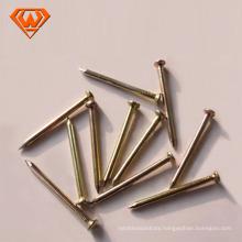 Polished Brass Finish Nail