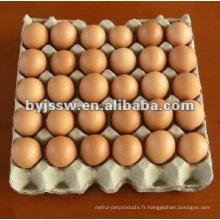 30 Bac à oeufs en pulpe de papier cellulaire