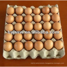 30 Cell Paper Pulp Egg Tray