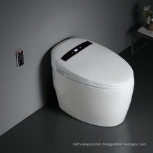 New Automatic Functions Intelligent Electric Toilet