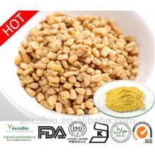 Polvo de extracto de semillas de alholva 100% natural de alta calidad en polvo 4-hidroxiisoleucina 60% a granel