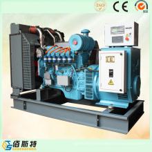 Generador de gas metano de gas metano de energía eléctrica (China) para Domsetic