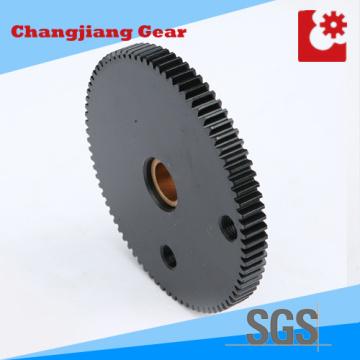 Chemical Black Pinion Standard Lager Getriebe Spur Kettenrad Getriebe