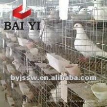 Design de gaiolas de pombos