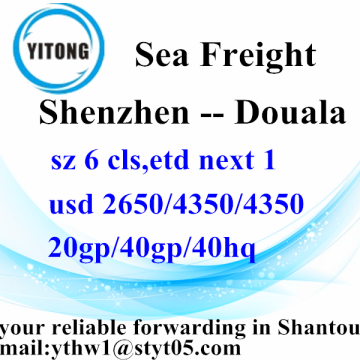 Shenzhen International Sea Freight Services d'expédition à Douala