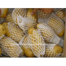 Fresh Chinese potato