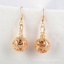 Fashion Jewelry/Jewelry Earrings/Metal Flower Ball with Hook Earring (XJW1650)